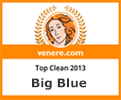 Top Clean Award 2013